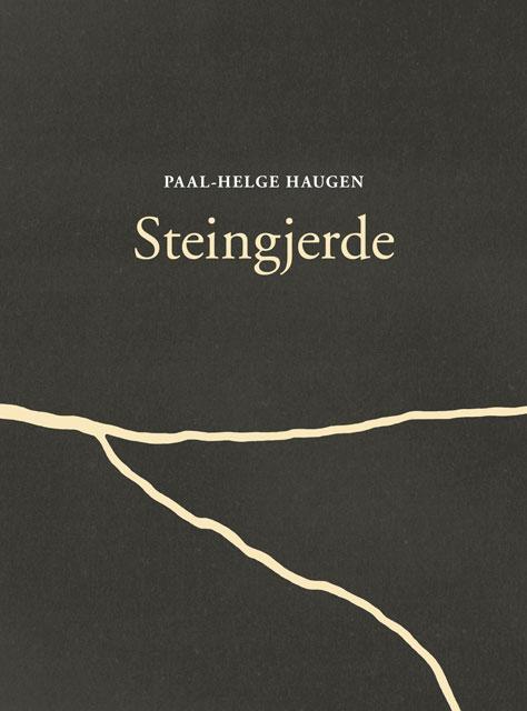 Haugen_Steigjerde_forside